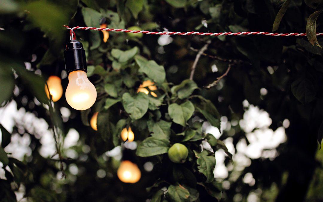 Geld besparen in je tuin